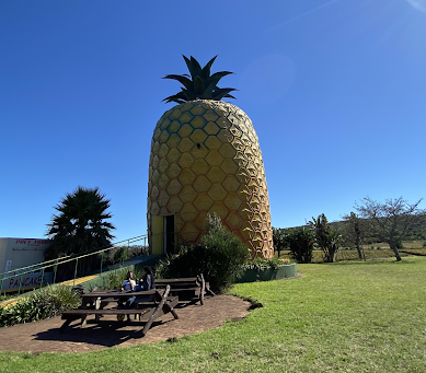 A student's guide to Bathurst