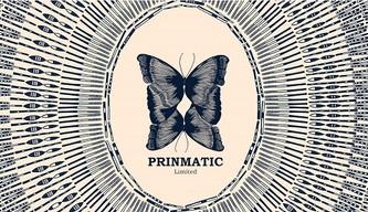 PRINMATIC Design Concept(프린마틱 디자인 컨셉)