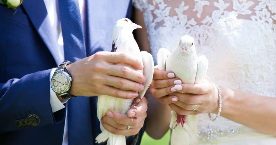 Свадебные Голуби - Отличный Подарок Молодожёнам