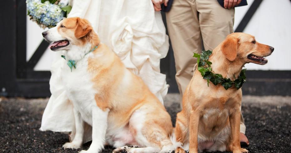 Ways To Personalize Your Wedding Ceremony