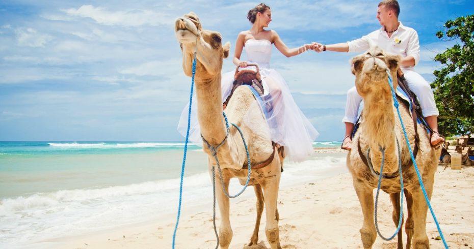5 Способов Сделать Свадьбу Незабываемой