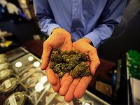 marijuanastore01-420.jpg