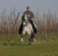 Marco van Mil, HC Rijkunst, Borgloon