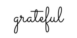November 2020 Update / Gratitude
