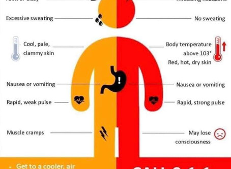Signs & Symptoms During High Heat Index Days