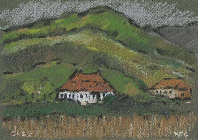 Cege - Țaga