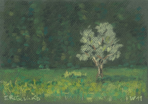 Erdőcsinád - Pădureni