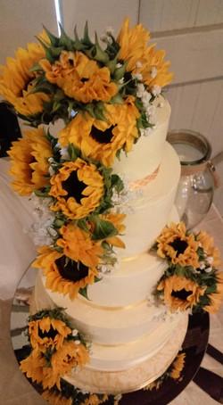 Farmers Market, Sunflowers 3