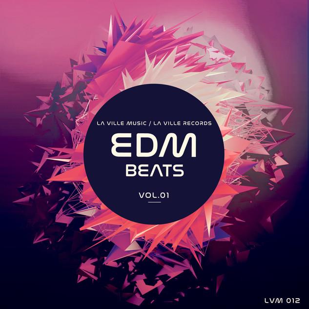 LVM 12 - EDM Beats