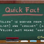 etymology-velcro.jpg