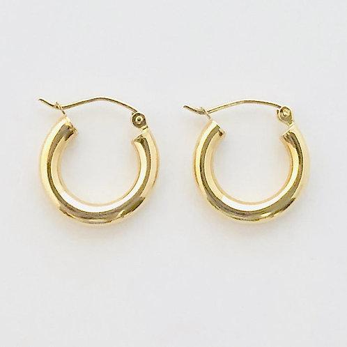 Small Hoops Earrings in 14k Yellow Gold