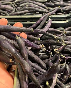 Black beans 24-09-2019.jpg