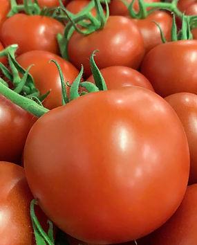 tomato round on the vine 24-09-2019.jpg