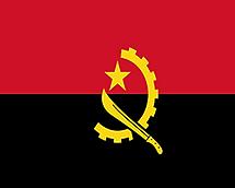 angolaLogo.png