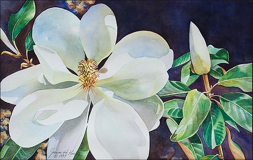 Corner Gallery magnolia Jeanne Koelle ss