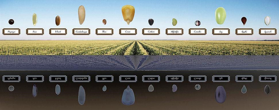 Monsanto Short List.jpg