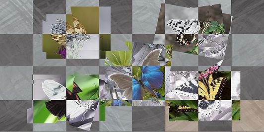 Butterflies Fractured.jpg