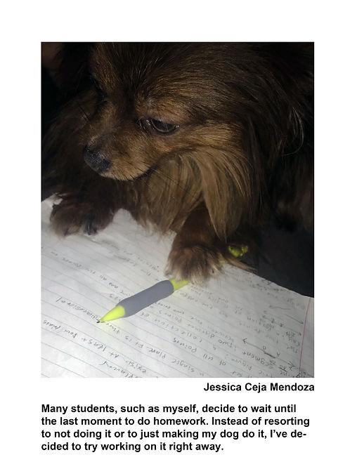 Ceja Mendoza Jessica 10.jpg