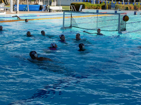 Summer Water Polo Launches in Cairns