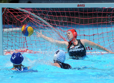 Water Polo Comes of Age in Cairns - State Tournament Announced