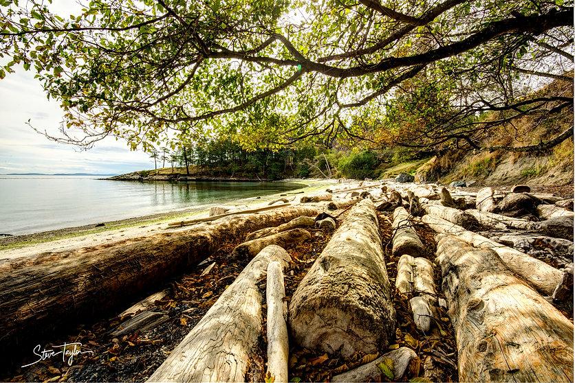 beach 25mb.jpg