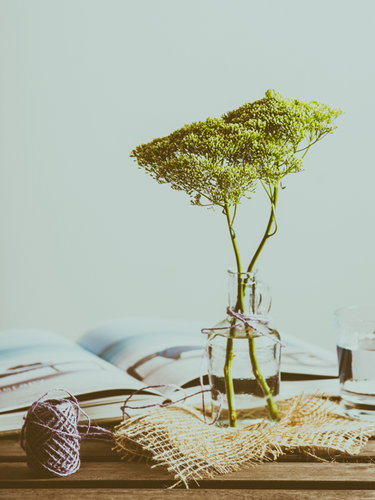 Lookfilter-Preset-Anomaly-Sample-Image10