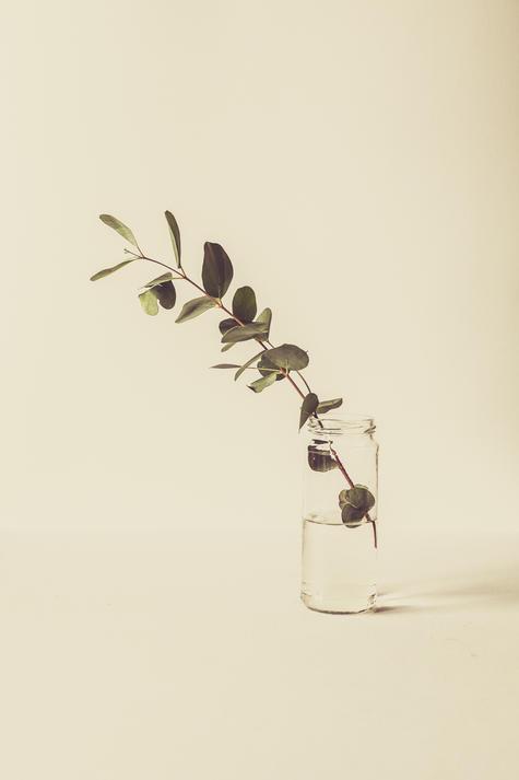 Presets-for-Wedding-still-life-flower.jp
