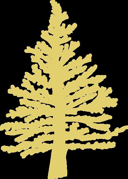 TCM_Tree_Gold-2.png