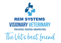 REM SYSTEMS logo.png