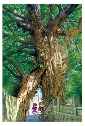「奈良尾神社のアコウの樹(中通島)」五島百景×ばらかもん コラボレーション ポストカード