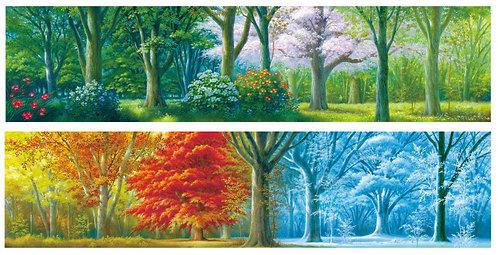 菩提樹の春夏秋冬 ポストカード