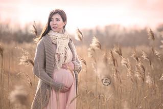 _P6A2318 sesje ciążowe poznań fotograf c