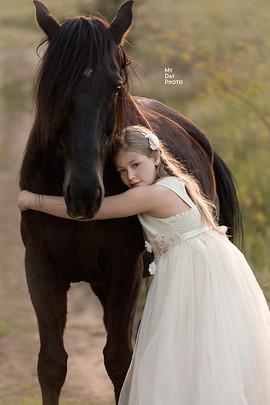 00001085_sesja_z_koniem_poznań_horse_ph
