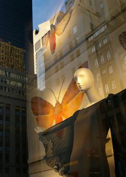 Day Dream. New York City