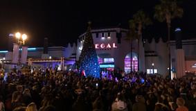 Christmas_Tree_lighting_2019_WEB-43.jpg