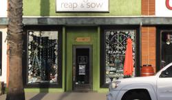 Reap & Sow Window Decorating.jpg