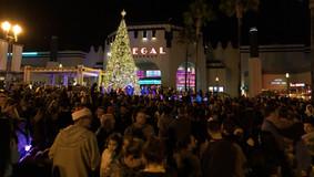 Christmas_Tree_lighting_2019_WEB-56.jpg