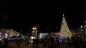 Christmas_Tree_lighting_2019_WEB-71.jpg