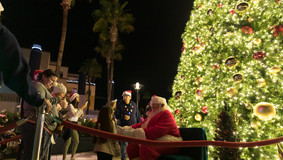 Christmas_Tree_lighting_2019_WEB-59.jpg