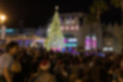 Christmas_Tree_lighting_2019_WEB-55.jpg
