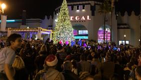 Christmas_Tree_lighting_2019_WEB-55.jpg