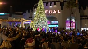Christmas_Tree_lighting_2019_WEB-54.jpg