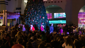 Christmas_Tree_lighting_2019_WEB-45.jpg