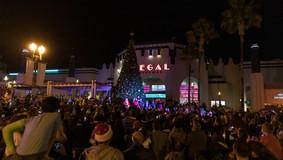 Christmas_Tree_lighting_2019_WEB-48.jpg