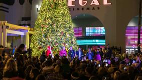 Christmas_Tree_lighting_2019_WEB-52.jpg