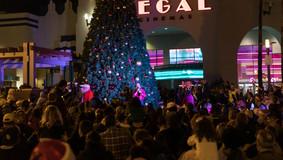 Christmas_Tree_lighting_2019_WEB-46.jpg