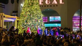 Christmas_Tree_lighting_2019_WEB-53.jpg