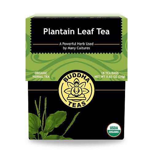 Plantain Leaf Tea - Organic - 18 Tea Bags