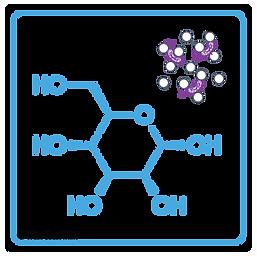 D-Mannose_Molecule_PetriDish_UpdatedECol