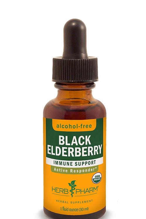 Black Elderberry Tincture, Alcohol Free - 1 fl oz